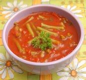 Suppe von Tomaten stockbild