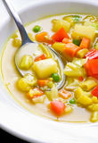 Suppen-Abschluss des strengen Vegetariers oben lizenzfreie stockbilder