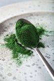Supplément diététique sain de poudre de Spirulina Images stock