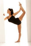 Supple Dancer In Ballet Pose Stock Photo