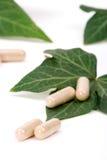 Supplementi di erbe Fotografia Stock