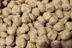 Supplemento della proteina dei bei pezzi della soia per culturismo Immagini Stock Libere da Diritti