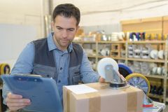 Supply clerk reading information Stock Images