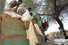 Supply food aid for Afar people, Ethiopia. Ethiopia, Afar region: In Afar, an ethnic group of semi-nomadic livestock farmers, there is a threat of famine due to Royalty Free Stock Photo
