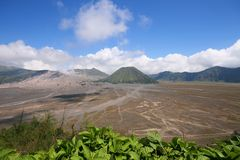 Support Bromo Photo stock