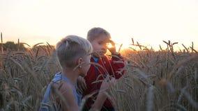 Support d'enfants dans un domaine de blé Deux enfants rire et sourire Promenades à l'air frais pendant le coucher du soleil clips vidéos