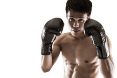Support de boxeur sur le fond blanc Photographie stock libre de droits