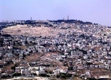 Support de Jérusalem du panorama 2005 d'olives Images libres de droits