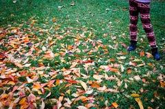 Support de jeune fille devant les feuilles automnales d'érable Photos stock