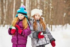 Support de sourire de deux amies en parc d'hiver Images stock