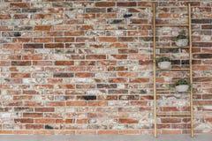 Support et mur de briques de fleur d'échelle photo stock