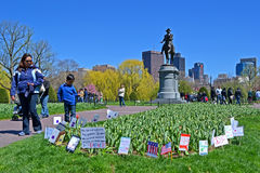 Support flags near Washington monument, Boston, Royalty Free Stock Photo