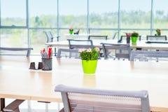 Support focalisé de pot et de papeterie de fleur sur la longue table de bureau dans l'intérieur léger du bureau ouvert d'espace d Photos libres de droits