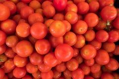 Support frais de tomate à un marché d'aliment biologique de rue image stock