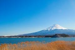 Support Fuji Photographie stock libre de droits