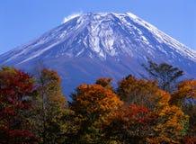 Support Fuji dans l'automne VII Images libres de droits