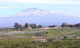 Support l'Etna - Images libres de droits