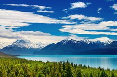 support Nouvelle Zélande de cuisinier Photos stock