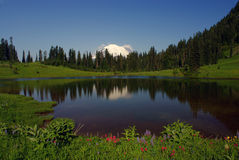 Support plus pluvieux et lac Tipsoo Photographie stock