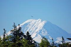 Support plus pluvieux, l'état de Washington Photographie stock