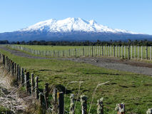 Support Ruapehu Photos libres de droits