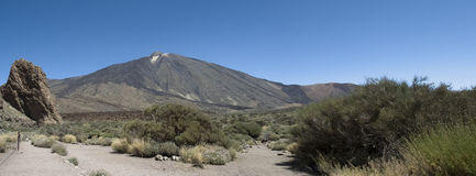 Support Teide Photos stock