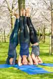 Supported headstand pose Royalty Free Stock Images