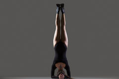Supported Headstand posture Stock Image