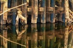 Supporti carbonizzati del ponte di legno che riflettono nell'insenatura Immagine Stock
