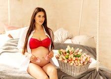 Supporti incinti i bei di una ragazza si siede in una stanza di rosa-chiaro a Immagine Stock