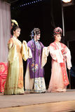 Supporting actresses, taiwanese opera jinyuliangyuan stills Stock Photo