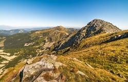 Supporto Chopok, Tatras basso Ridge Fotografia Stock Libera da Diritti