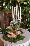 supporto conico della molla, invaso con pianta Composizione decorativa con le candele, il muschio ed i dettagli di legno Fotografia Stock