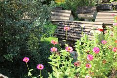 Supporto degli alveari nel giardino Fotografia Stock Libera da Diritti