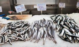 Supporto 2 del pesce Fotografia Stock