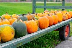 Supporto dell'azienda agricola del bordo della strada con il vagone delle zucche nella varietà di forme, fotografia stock