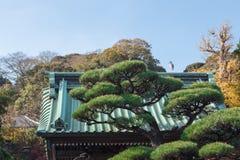 Supporto dell'uccello della cicogna sulla cima del tetto di stile giapponese Fotografie Stock