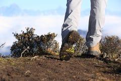 Supporto delle gambe della viandante sulla montagna Immagini Stock