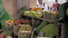 Supporto di frutta variopinto in un ananas locale del mercato, mango, frutto della passione Asia archivi video