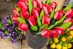 Supporto di legno variopinto dei tulipani in piccolo secchio Fotografia Stock Libera da Diritti