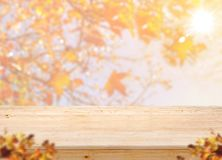 Supporto di legno vuoto dell'alimento del piano d'appoggio con la foglia di acero della sfuocatura con sunl Fotografia Stock Libera da Diritti