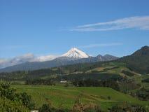 Supporto Egmont, NZ Fotografia Stock Libera da Diritti