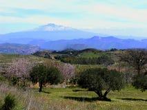 Supporto Etna - Fotografie Stock Libere da Diritti