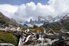 Supporto Fitz Roy Patagonia, Argentina Fotografia Stock Libera da Diritti