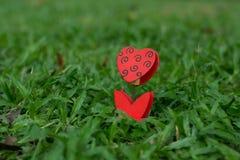 Supporto in forma di cuore della foto sull'erba verde fotografie stock