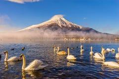Supporto Fuji, Giappone Fotografia Stock