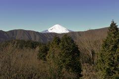 Supporto Fuji in inverno Fotografie Stock Libere da Diritti