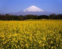Supporto Fuji XXVI Immagini Stock
