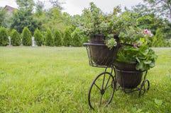 Supporto per i fiori sotto forma di bicicletta Fotografia Stock