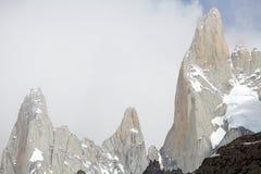 Supporto Poicenot al parco nazionale di Los Glaciares, Argentina Fotografia Stock Libera da Diritti